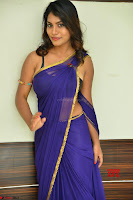 Actress Priya in Blue Saree and Sleevelss Choli at Javed Habib Salon launch ~  Exclusive Galleries 052.jpg