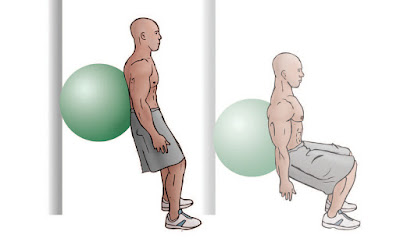 Double Leg Standing Squats w/ Swiss Ball