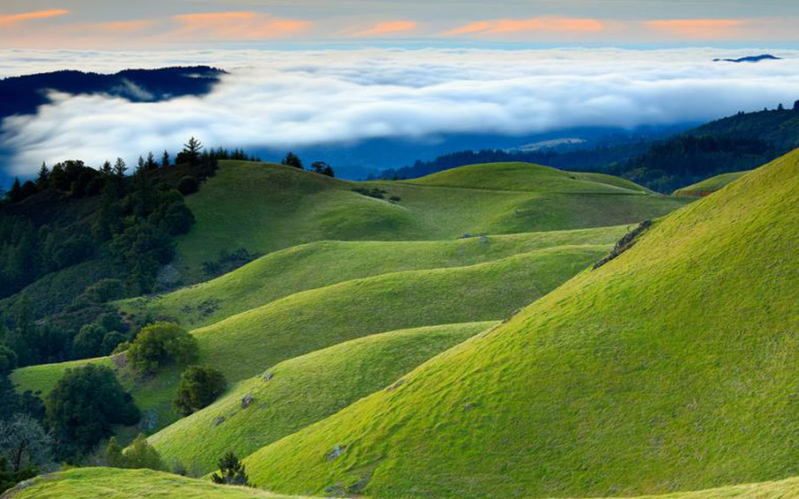 Wallpapers Grassy Hills Wallpapers