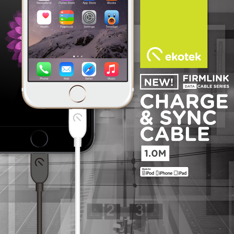 Ekotek Firmlink Charge & Sync Cable
