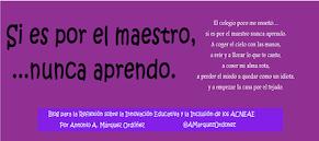 si_es_por_maestro_nunca_aprendo