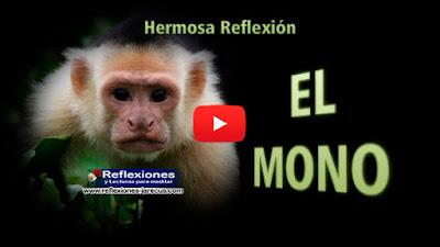 El mono✅Había una vez un mono que mientras saltaba vio un bello nogal. Cogió una nuez y la mordió. Como la cáscara estaba amarga, el mono la tiró y se quedó sin probar el rico bocado que tenía dentro.