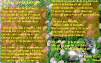 http://www.kizoa.fr/Montage-Video/d80589744kP262142661o4l1/ma-concierge