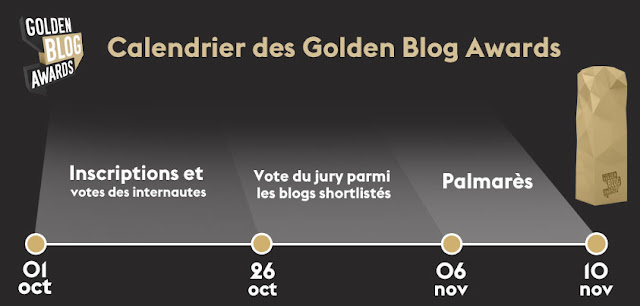 Golden Blog Awards 2015 Paris - Hôtel de Ville
