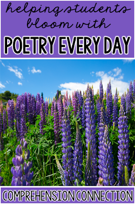This round up post includes recommended reading, poetry analysis activites, ideas for teaching poetic devices, video and web based activities, and more. Free resources included.
