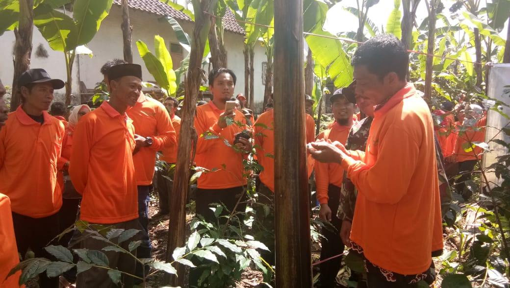 Serap Ilmu Pertanian Petani Desa Pasrujambe Diajak Praktek Lapangan