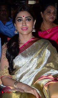 Actress Shriya Saran New Images in Silk Saree at Gautamiputra Satakarni Audio Launch  0015.jpg