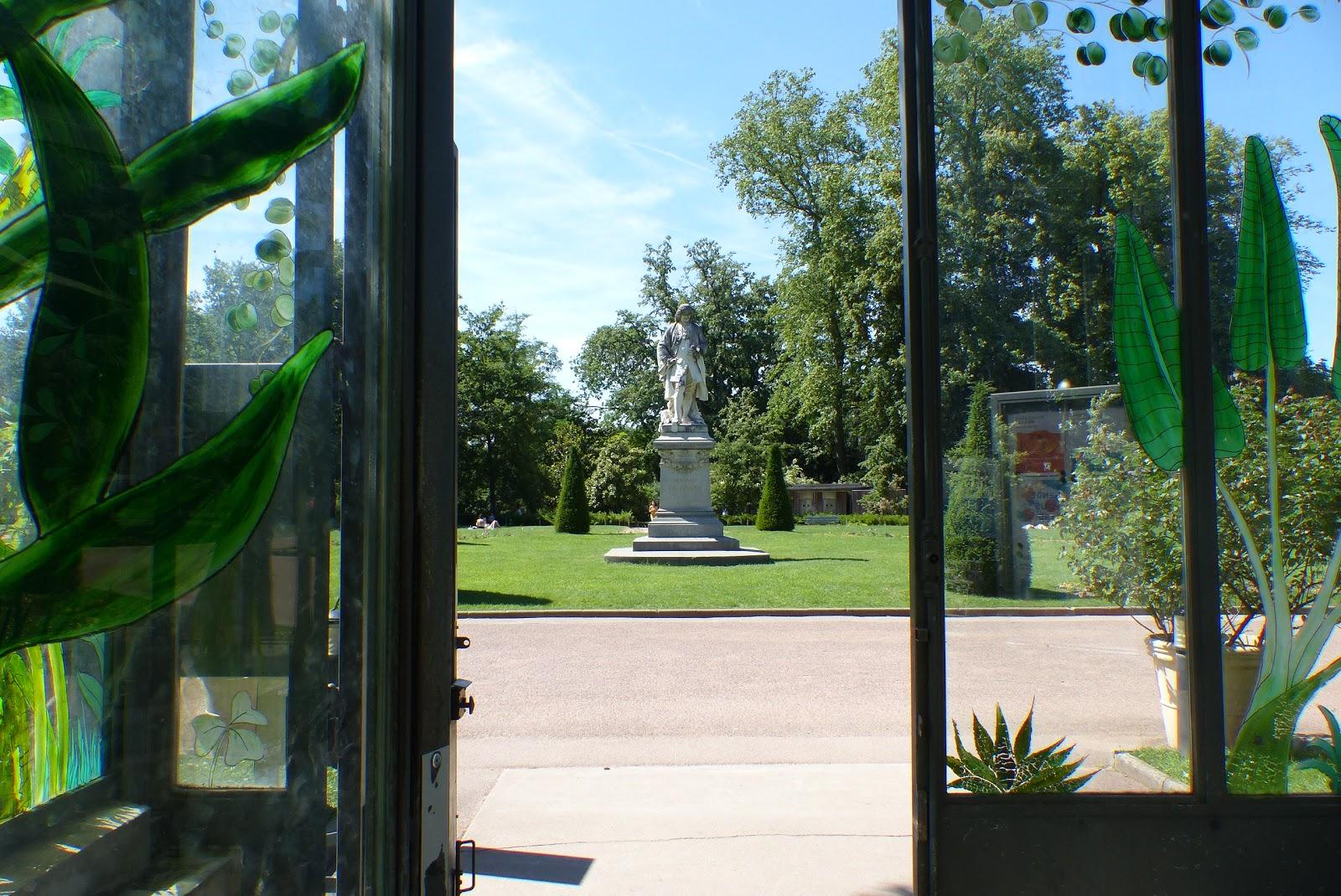 Merle colibri botanique dans un m li m lo for Jardin couvert lyon