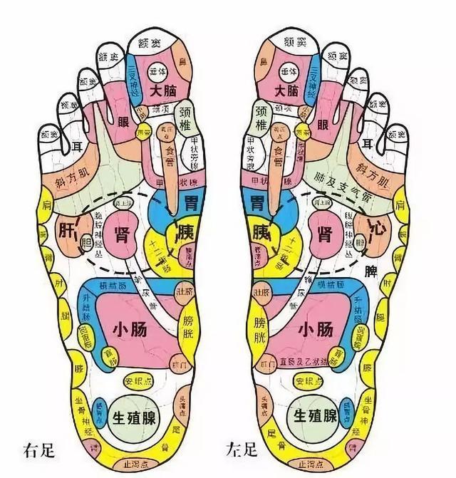 """雙腳7個變化說明""""人老了"""",3個動作強健腿腳,抗衰老、駐青春"""