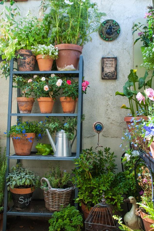 Secret Garden: The Magic Garden: Hello Secret Garden
