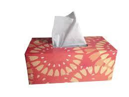 papel-tissues-llevar-en-la-mochila-de-viaje