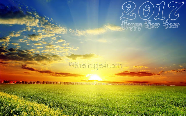 Happy New Year 2017 Best 1080p HD Nature Pictures Download For Desktop/PC