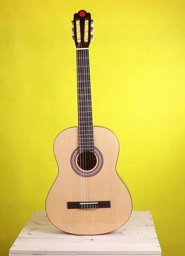 dan guitar classic chateau
