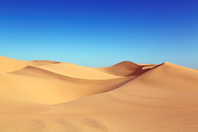 Facts About Desert In Hindi