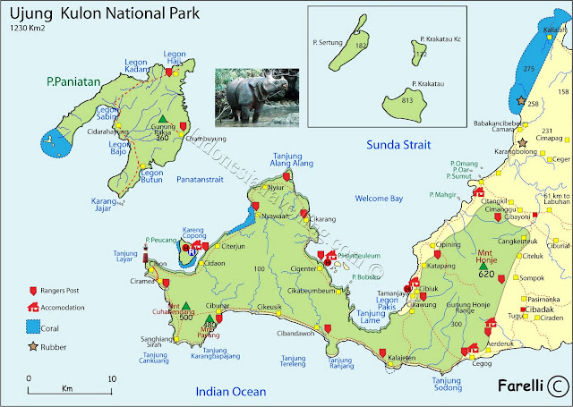 Discover in Ujung Kulon National Park