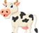 daging sapi asli