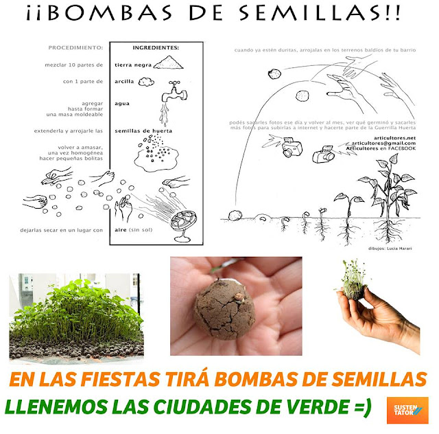 Alternativa para estas fiestas : Bombas de semillas