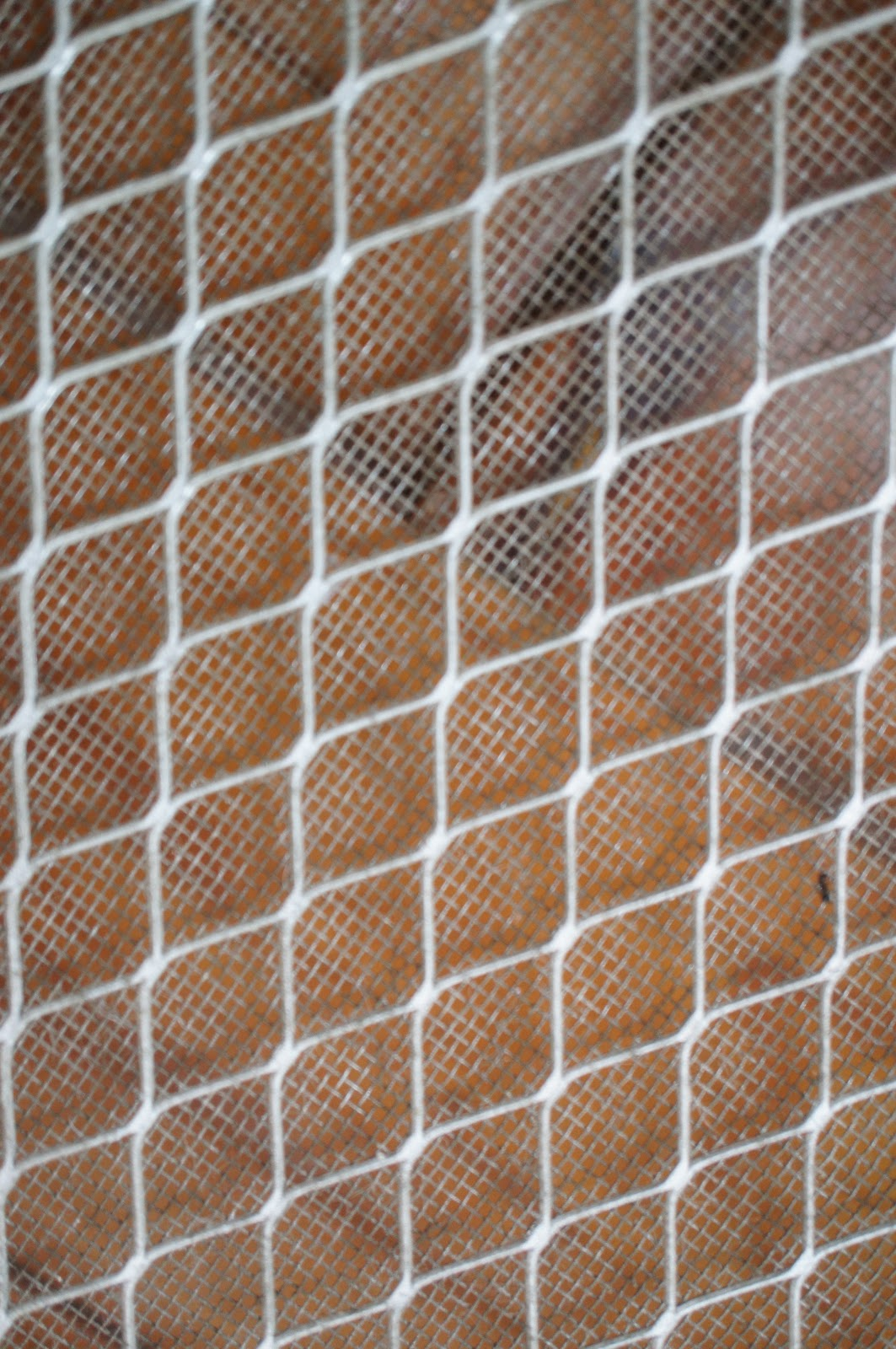 Wire mesh free picture for commercial use, mesh, wires, wire