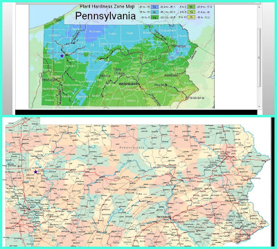 planting zones USA