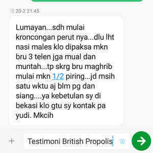 TESTIMONI BRITISH PROPOLIS OBAT TRADISIONAL PENURUN PANAS PADA ANAK