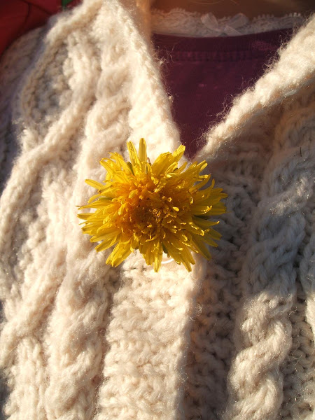 yellow dandelion worn as a pretty buttonhole on a childs cardigan