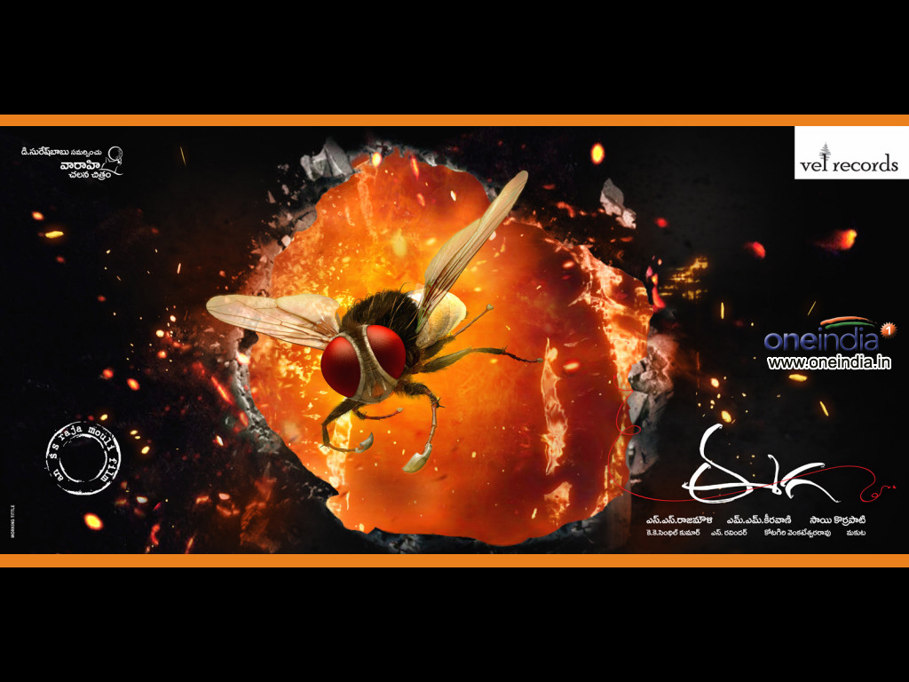 Makkhi 2012 Movie Hd Wallpapers And Review: Latest Update 24*7