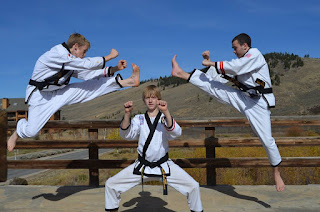 Karate and taekwondo black belts doing martial arts blocks and kicks