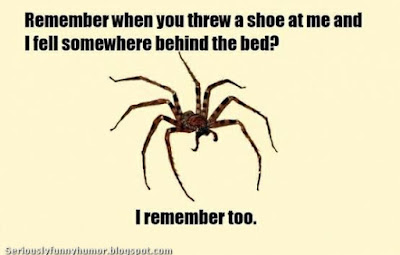 Spider remembers you throwing a shoe at it and it falling behind the bed!