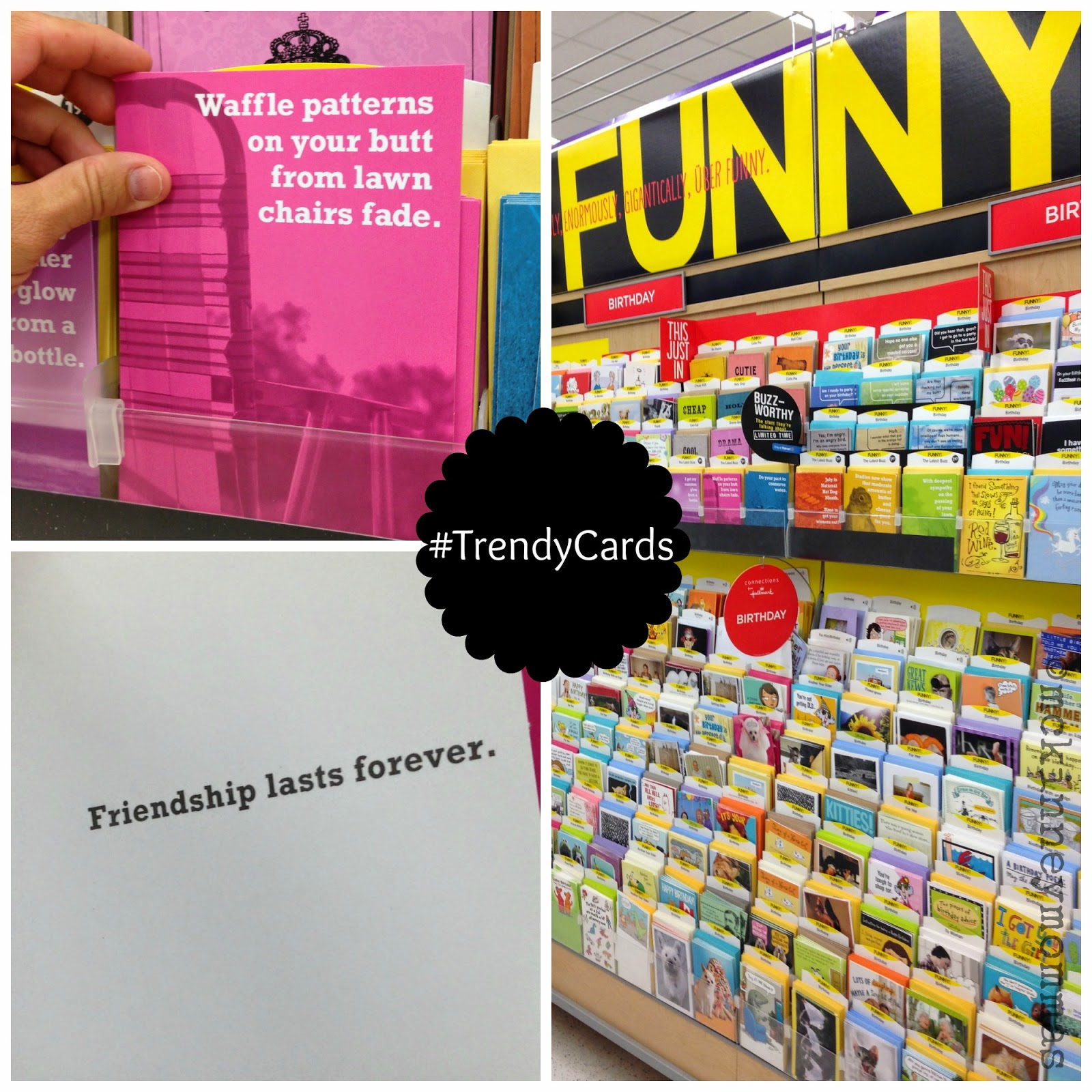 #shop funny greeting cards