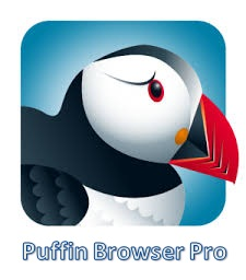 Puffin Browser Pro Apk Terbaru v6.1.4.16005 for Android Latest Version