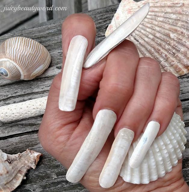 fantasy seashell nails