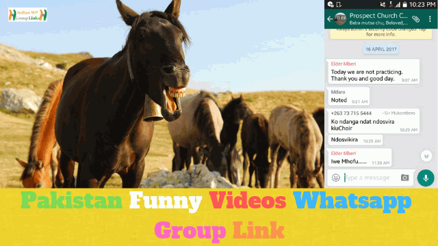 259+ Best Pakistani Funny Videos Whatsapp Group Link List