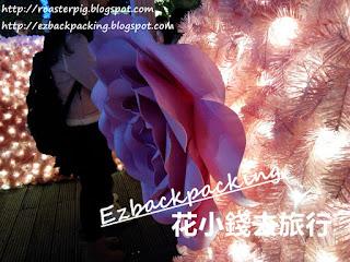 Starlight Garden聖誕燈飾2017