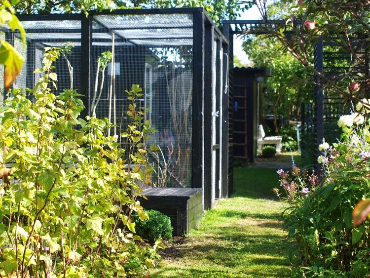 Hjemmebygget hønsegård til den moderne have