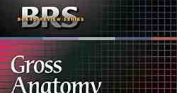 Pdf 7th gross edition brs anatomy