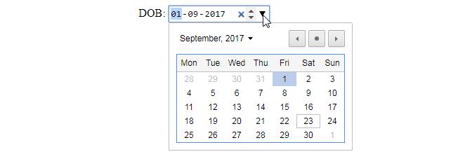 date-input