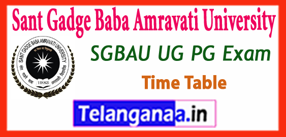 SGBAU Sant Gadge Baba Amravati University UG PG Winter Exam Time Table 2018-19 Admit Card