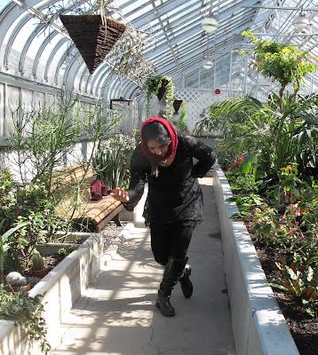 Résultats de recherche d'images pour «shahrzad vous raconte la vie, Westmount greenhouse»