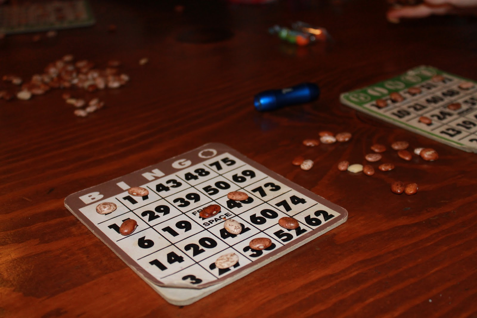A fun way to play bingo without having to throw away your cards - use beans for markers!