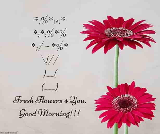 good morning sms with fresh flowers