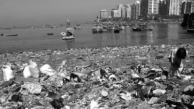 poluição, lixo, meio ambiente, conscientização, sustentabilidade