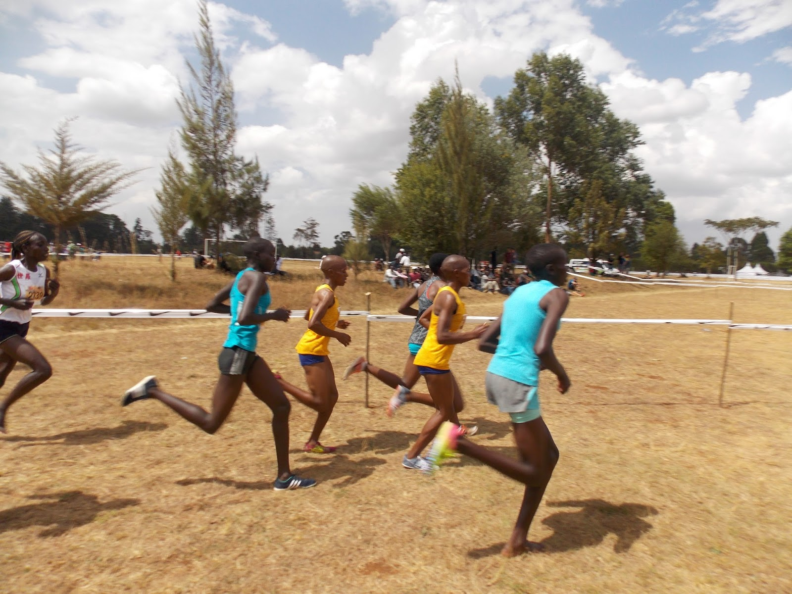 Kenyans to watch in the shape up to the World Cross