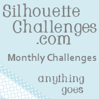 Silhouette Challenges