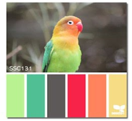 http://catchthebugblog.blogspot.nl/2017/05/a-color-challenge.html