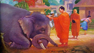L'asceta, il guru e l'elefante impazzito - Buddha