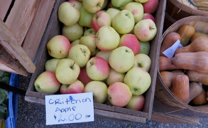 "A wooden bin of yellow and orange Criterion apples, with a label that reads ""Criterion Apple $2.00 lb."""