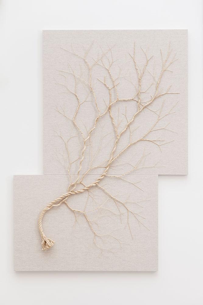 رسم بواسطة الحبال,صور,Drawing by ropes,Ropes,Seile