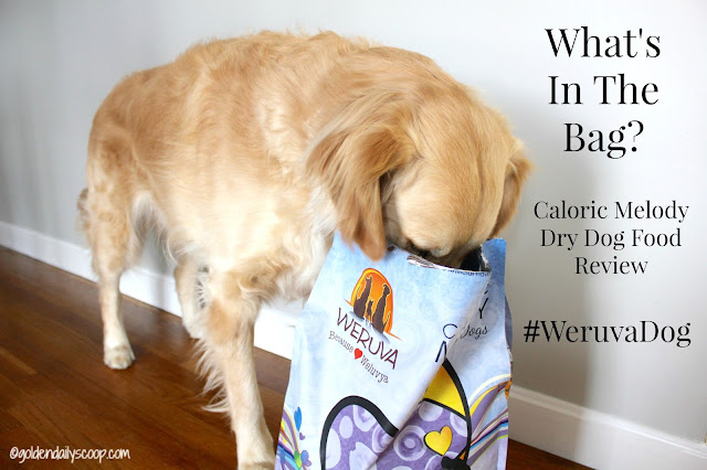 Weruva Caloric Melody healthy dog food review