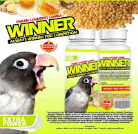 Pakan Burung Lovebird Lomba COMPETITION LOMBA WINNER