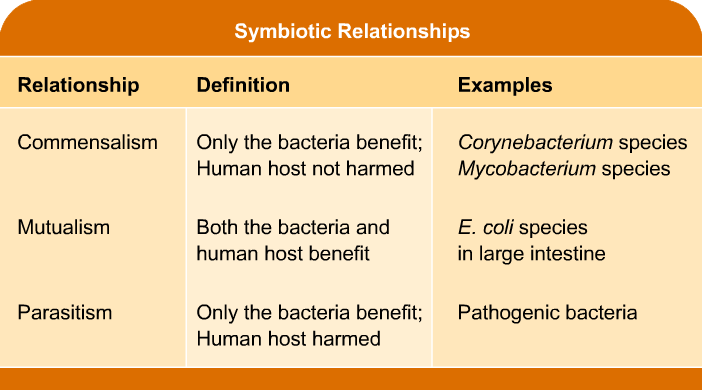 mutualistic relationship between humans and bacteria share
